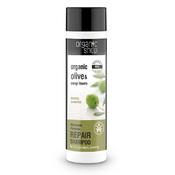 Product_catalog_olive