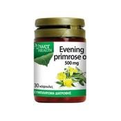 Product_catalog_evening_primrose