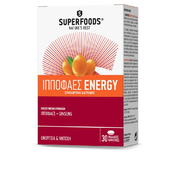 Product_catalog_ippofaes-energy-gr-r