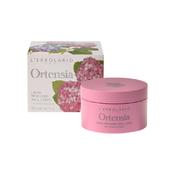 Product_catalog_8022328108031_ortensia_crema_corpo