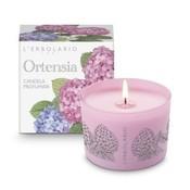 Product_catalog_ortensia-hydrangea-hydrangea-perfumed-candle