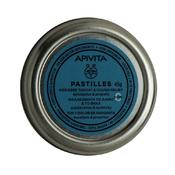 Product_catalog_00-10-60-013-pastilles-eucalypt-en.gr_.sp20