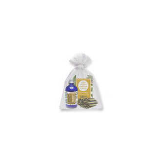 Camoil Δυναμωτικό Μαλλιών Έλαιο Δάφνης με Ηλίανθο και Βιταμίνη E - 100ml γυναικα   μαλλια   λαδια